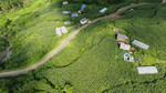Aerial view of green houses  in Pokhara village