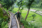 Farmer managing water in his paddy field from Timur Sein multipurpose irrigation project, in Bhairabi Rural Municipality in Dailekh district of Nepal