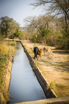 Canal in Chochocho District, South Africa