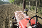 A view of a red farm tractor on the edge of a farm field