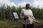 Irrigating a farm using solar powered water pump