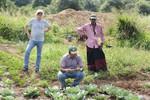 IWMI staff in the field