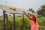Woman cleaning solar panels to increase productivity of solar panels