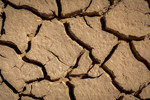 Close-up of mud cracks