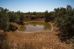 Drying Water pond