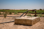 Water well -  HRH Prince Ghazi's farming initiative