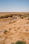 Dry river bed – found on the Azraq desert highway